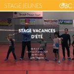 stage jeunes badminton orvault badminton club